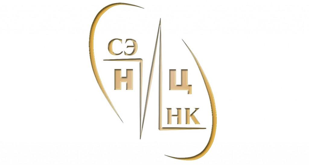 NITS_logo1
